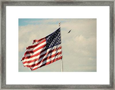 Happy Birthday America Framed Print by Susanne Van Hulst