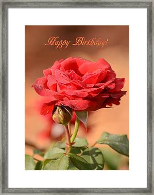 Happy Birthday Rose Framed Print