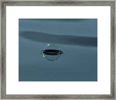 Framed Print featuring the photograph Happy Bubble by Cathie Douglas