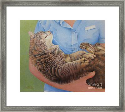 Happy Cat Framed Print by Pamela Clements