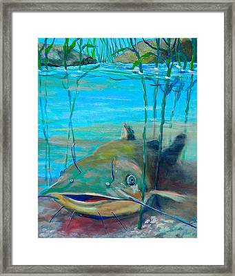 Happy Catfish Framed Print