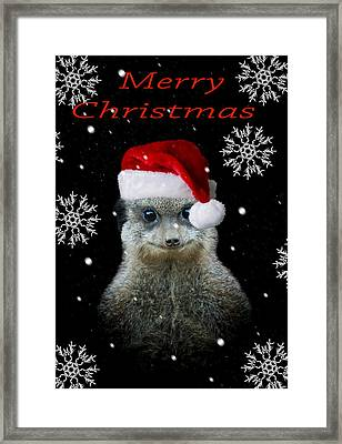 Happy Christmas Framed Print by Paul Neville