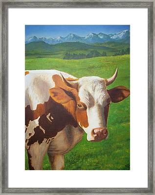 Happy Cow Framed Print by Sabina Bonifazi