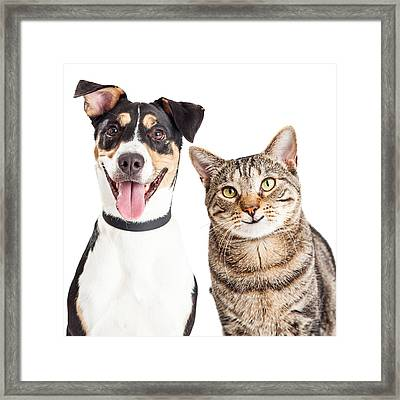 Happy Dog And Cat Together Closeup Framed Print