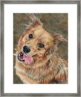 Happy Dog Framed Print by Joanne Stevens