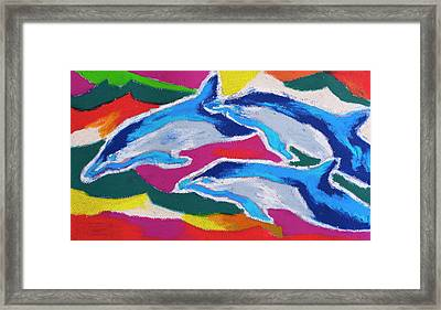 Happy Dolphin Dance Framed Print by Stephen Anderson