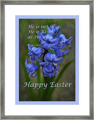 Framed Print featuring the photograph Happy Easter Hyacinth by Ann Bridges