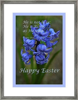 Happy Easter Hyacinth Framed Print by Ann Bridges