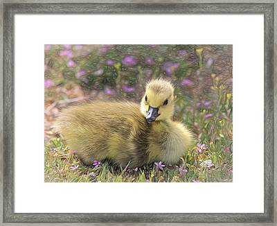 Happy Easter To You Framed Print