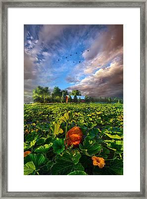 Happy Endings Framed Print by Phil Koch