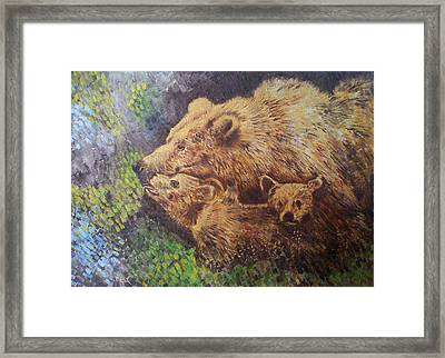 Grizzly Bear Framed Print by Remy Francis