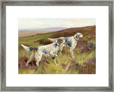 Happy Four Paws English Setters Framed Print