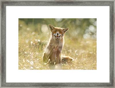 Happy Fox Is Happy Framed Print by Roeselien Raimond