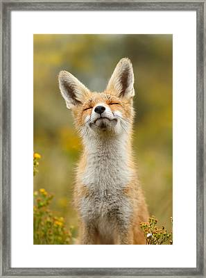Happy Fox Framed Print by Roeselien Raimond