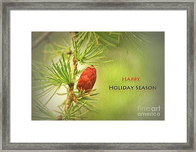 Framed Print featuring the photograph Happy Holiday Season Card by Aimelle