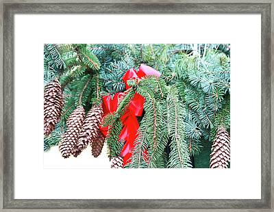 Framed Print featuring the photograph Happy Holidays by Ann Murphy