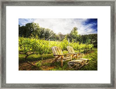 Happy Hour At The Vineyard Framed Print by Debra and Dave Vanderlaan