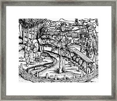 Happy Husbandsmen Tending Bees Framed Print by German School