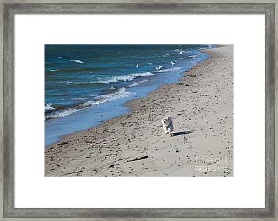 Framed Print featuring the photograph Happy I Am by Michelle Wiarda