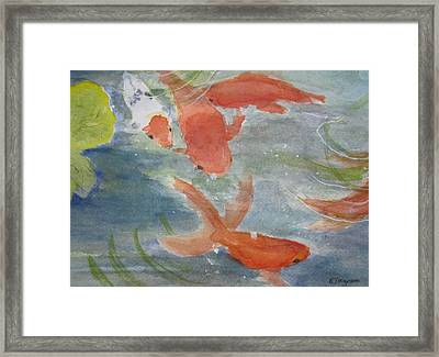Happy Koi Framed Print