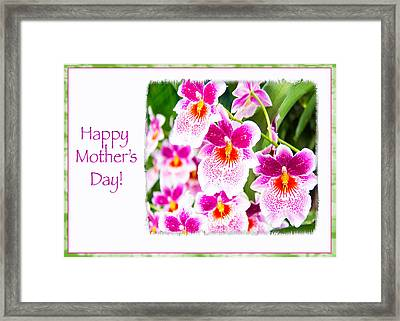 Happy Mother's Day Pink Cattleya  Orchids Framed Print by Daphne Sampson
