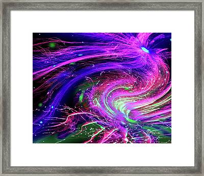Framed Print featuring the photograph Happy New Year 2017 by Barbara Tristan