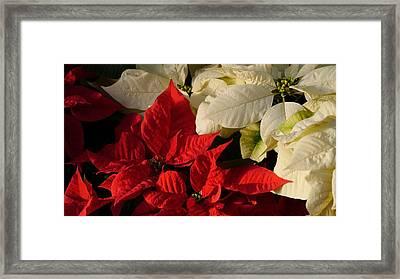 Happy New Year Y'all Framed Print