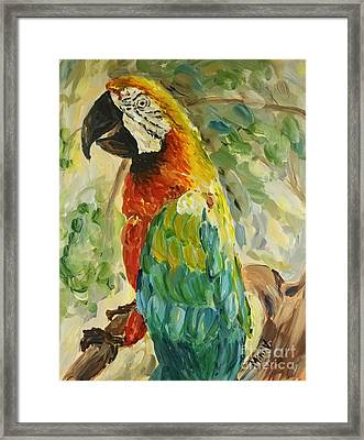 Framed Print featuring the painting Happy Parrot by Maria Langgle