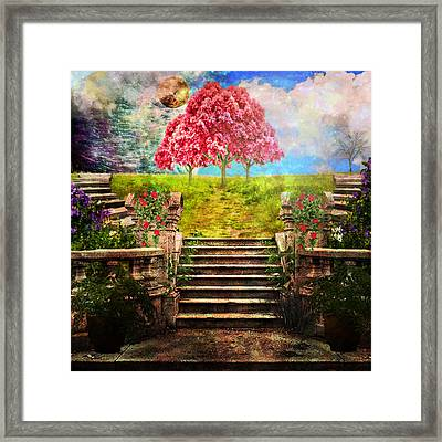 Happy Place Framed Print by Ally  White