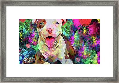 Happy Puppy Framed Print by Jon Neidert