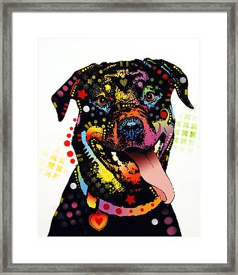 Happy Rottweiler Framed Print by Dean Russo