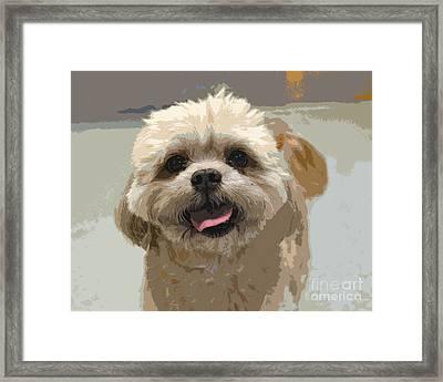 Happy Shih Tzu Framed Print