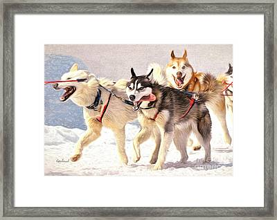 Happy Sled Dogs Framed Print