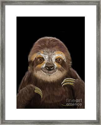 Happy Three Toe Sloth Framed Print