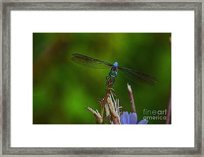Happy To See You Framed Print by Kathy Liebrum Bailey