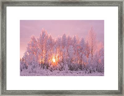 Happy Trees Framed Print by James Rhodes