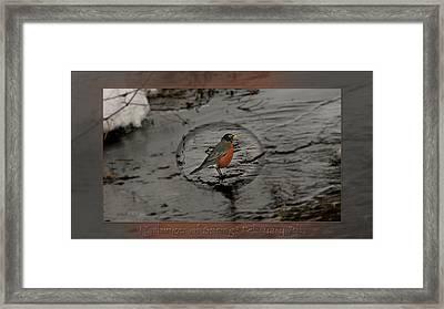 Harbinger Of Spring Framed Print by Doug Bratten