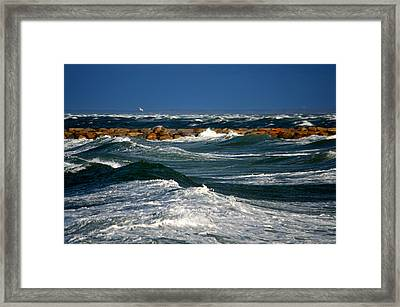 Harbor Blues - Cape Cod Bay Framed Print by Dianne Cowen