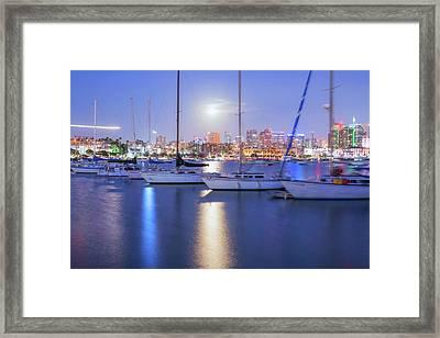 Harbor Bright Framed Print