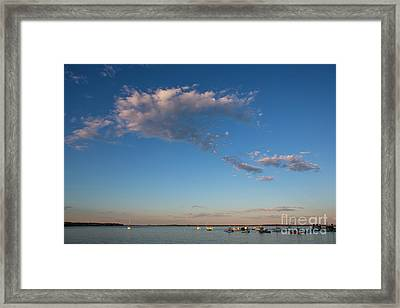 Harbor In Lincolnville,maine Framed Print