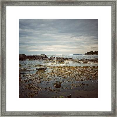 Framed Print featuring the photograph Harbor by Karen Stahlros