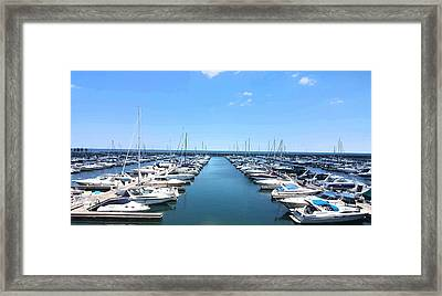 Harbor Life Framed Print