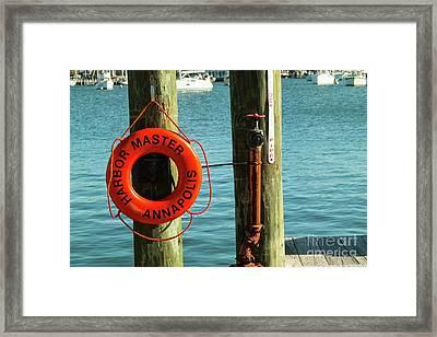 Harbor Life Preserver Framed Print