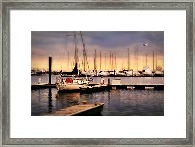 Harbor Point Stamford Framed Print