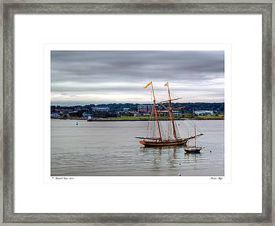 Framed Print featuring the photograph Harbor Ships by Richard Bean
