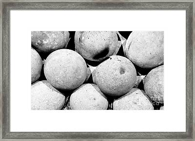 Hard Ball Framed Print by Slade Roberts