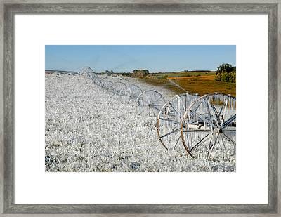 Hard Land Farming Framed Print by David Lee Thompson