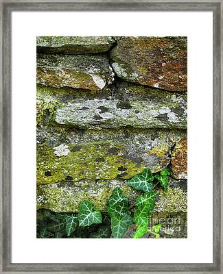 Hard Life Framed Print by Eena Bo
