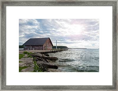 Hardy Gallery Framed Print by Joel Witmeyer