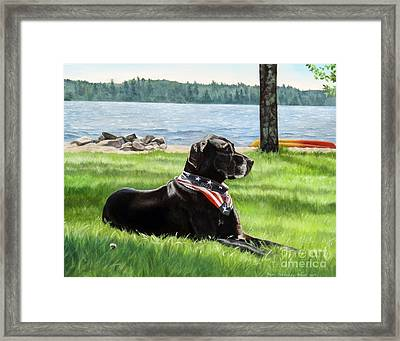 Harley At The Beach Framed Print
